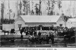 Photograph - Opening of Scottsdale Railway, August 1889 (copy)