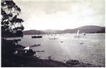 View of the Regatta, Hobart, 1884