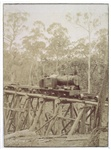"[""Coffee Pot"" locomotive hauling wagons across a railway bridge on the Wielangta tramline]"