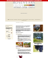 Cover image for Rosevears Vineyard : retreat, cellar, bistro