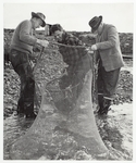 Cover image for Photograph - Trout fishing